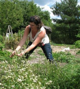 Jillian Bishop harvests seeds from a profusion of white flowers on her urban farm.