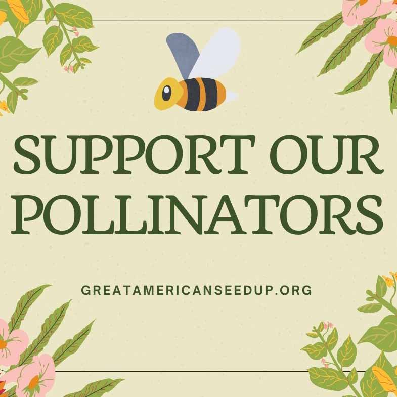 Pollinator Bundle